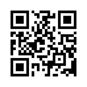 static qr code without logo